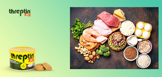 10 Best Reasons to Eat more protein on daily basis